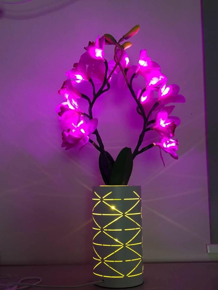 Kons-, Led Cymbidium Lamp 4w 50hz Warranty 3 Years-6