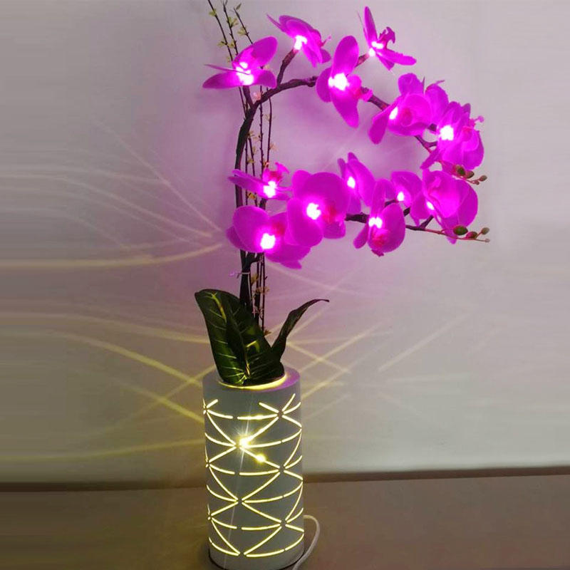 LED Butterfly orchid lamp 4W 50hz  Warranty 3 years